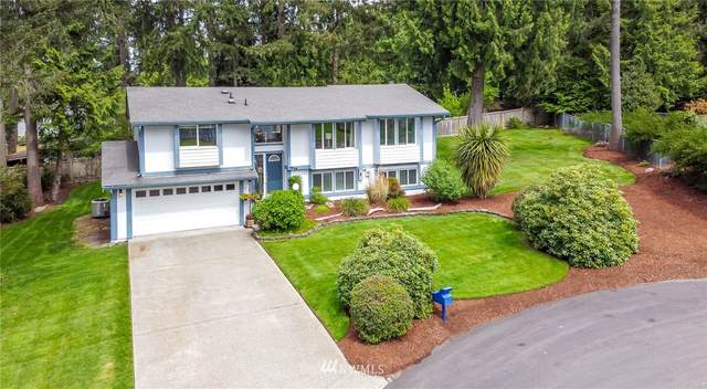 4213 57th Street Ct NW, Gig Harbor, WA 98335 (#1769360) :: Icon Real Estate Group