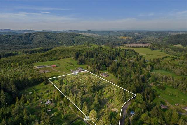 0 Hendrickson Road, Vader, WA 98611 (MLS #1769858) :: Community Real Estate Group