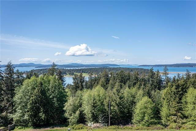 0 Dragon Run, Lopez Island, WA 98261 (#1769860) :: Lucas Pinto Real Estate Group