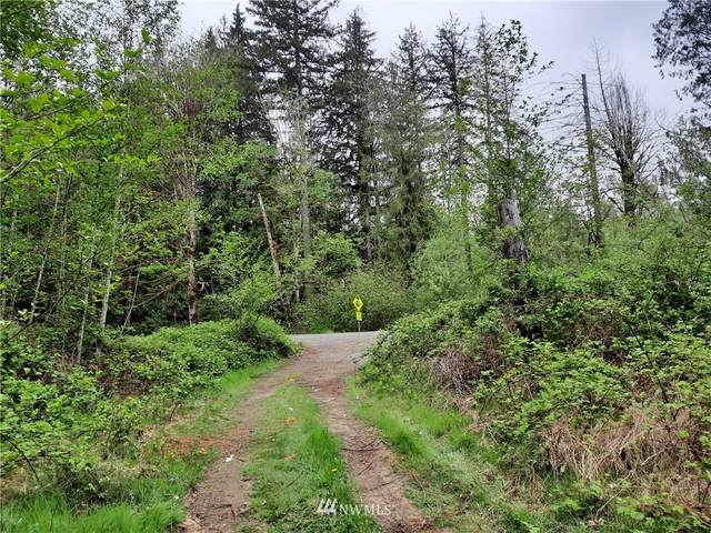 0 NE Old Belfair Highway, Belfair, WA 98528 (MLS #1769865) :: Community Real Estate Group