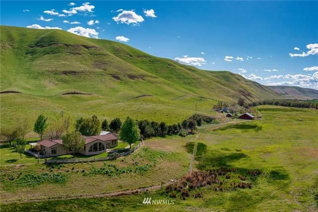 110 River Ranch Lane, Dayton, WA 99328 (#1769984) :: The Kendra Todd Group at Keller Williams