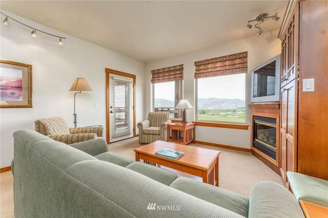 1030 Desert Canyon Boulevard #1203, Orondo, WA 98843 (#1770623) :: Northwest Home Team Realty, LLC