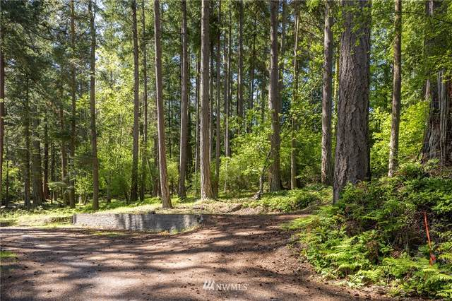 0 Captain Leison Lane, Lopez Island, WA 98261 (#1770628) :: Better Homes and Gardens Real Estate McKenzie Group