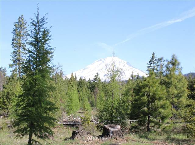 0 Mt. Adams Recreation Area Road, Trout Lake, WA 98650 (#1770651) :: TRI STAR Team | RE/MAX NW