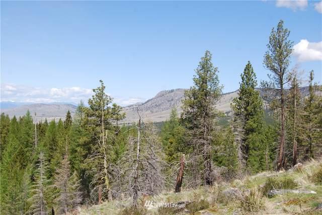 0 Stagecoach Trail, Riverside, WA 98849 (#1770662) :: NW Homeseekers