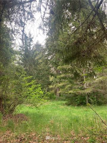 19129 Sr 706 E, Elbe, WA 98330 (MLS #1770664) :: Community Real Estate Group