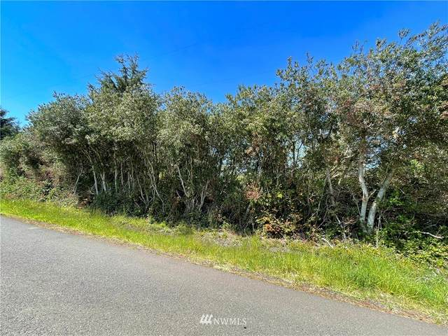 158 N Wynoochee Drive SW, Ocean Shores, WA 98569 (#1770842) :: Better Properties Lacey