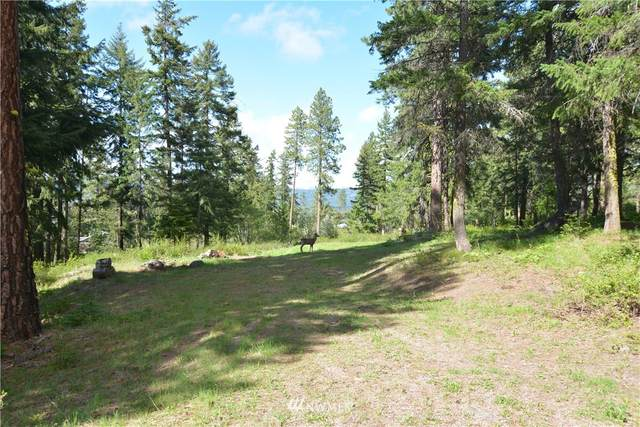 170 Noble Place, Cle Elum, WA 98922 (MLS #1770880) :: Brantley Christianson Real Estate