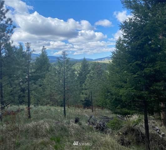 32 Buckboard Trail Road, Oroville, WA 98844 (#1771814) :: Northwest Home Team Realty, LLC
