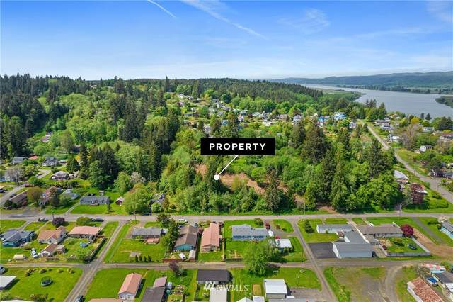 0 0 Pacific Avenue, South Bend, WA 98586 (#1771937) :: Keller Williams Western Realty