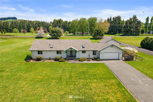 10 Goldau Road, Raymond, WA 98577 (MLS #1772089) :: Community Real Estate Group