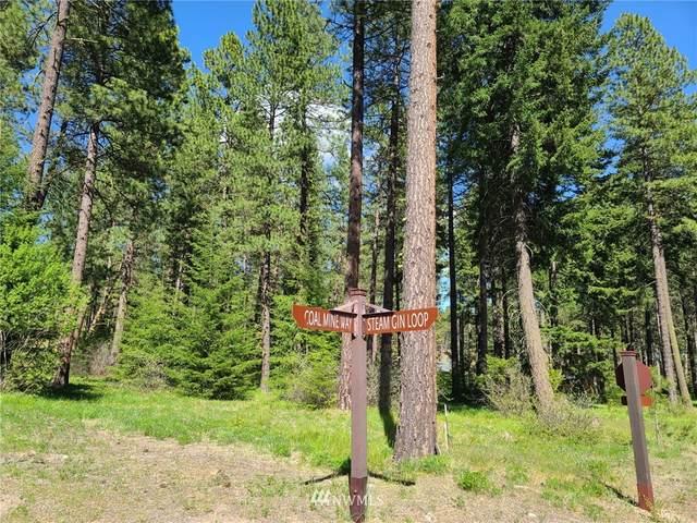 1810 Coal Mine Way, Cle Elum, WA 98922 (#1772466) :: Keller Williams Western Realty