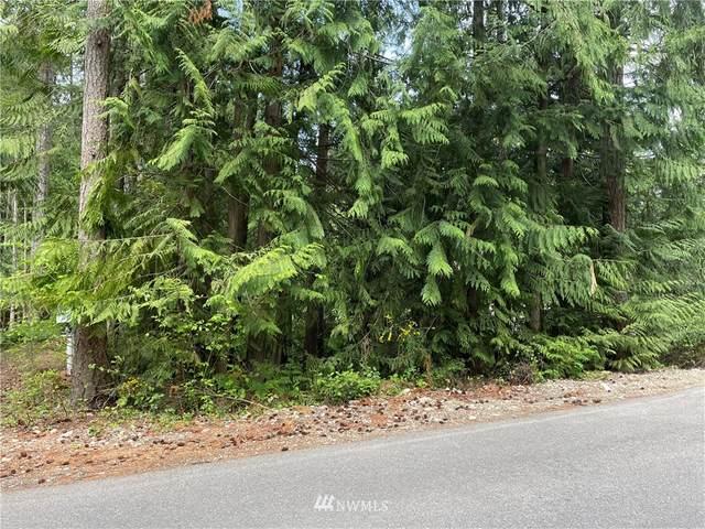 18545 Woodside Drive SE, Yelm, WA 98597 (#1772560) :: TRI STAR Team | RE/MAX NW