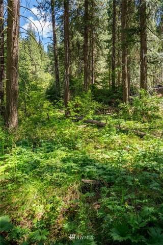 0 Chumstick Highway, Leavenworth, WA 98826 (MLS #1772597) :: Nick McLean Real Estate Group