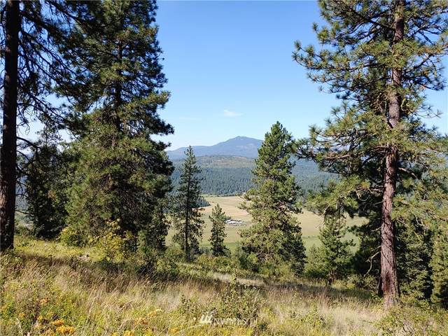 0 Wrights Valley Road, Chewelah, WA 99109 (#1772719) :: Beach & Blvd Real Estate Group