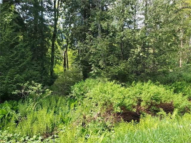 525 Cain Lake Road, Sedro Woolley, WA 98284 (#1772789) :: McAuley Homes