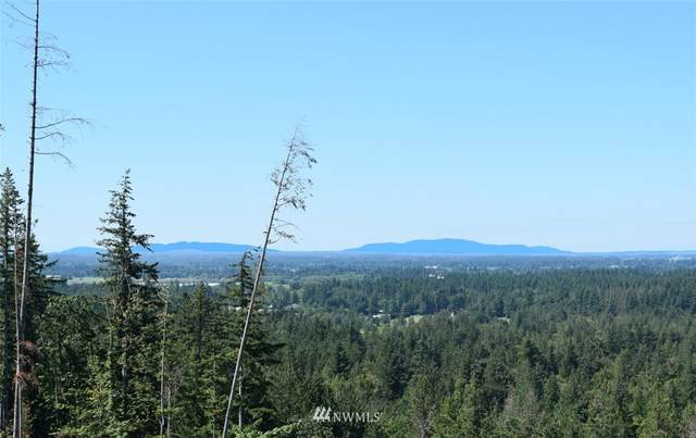 8400 North Pass Road, Everson, WA 98247 (#1773063) :: Northwest Home Team Realty, LLC
