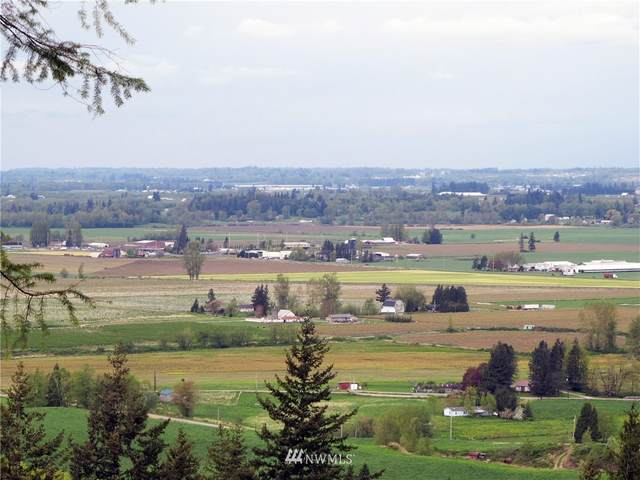 8400 N Pass Road, Nooksack, WA 98247 (#1773086) :: Northwest Home Team Realty, LLC