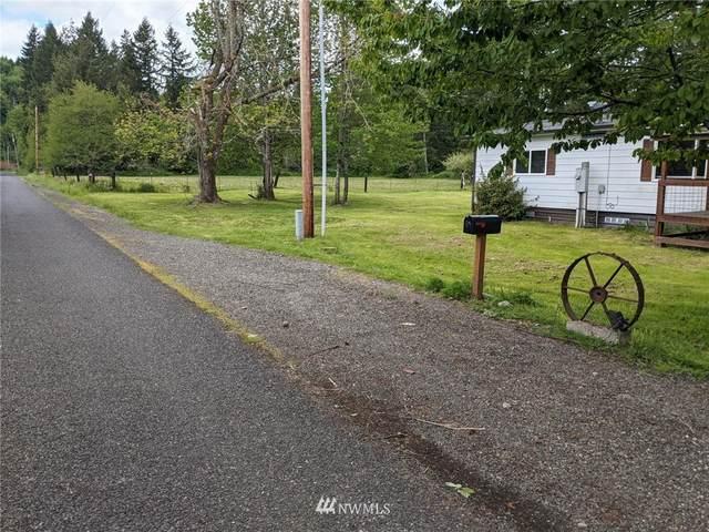 84 Lewis Road, Oakville, WA 98579 (#1773113) :: Beach & Blvd Real Estate Group