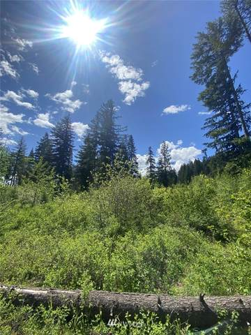 17 LOT Nelson Siding Road, Cle Elum, WA 98922 (#1773845) :: Icon Real Estate Group