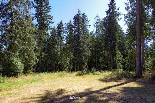 9999 Mountain Shadow Drive, Port Angeles, WA 98362 (#1773979) :: Priority One Realty Inc.