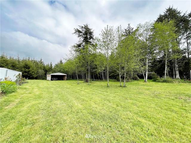 2702 State Route 109, Ocean City, WA 98569 (#1774038) :: Northwest Home Team Realty, LLC