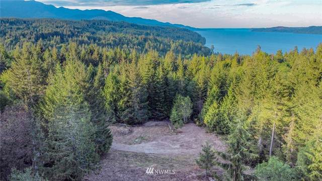91 N Hamma Vista Place, Lilliwaup, WA 98555 (#1774360) :: Home Realty, Inc
