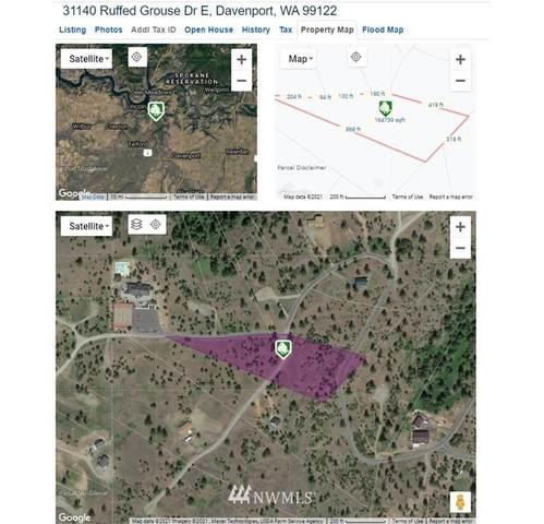 31140 Ruffed Grouse Drive E, Davenport, WA 99122 (#1774476) :: Northwest Home Team Realty, LLC