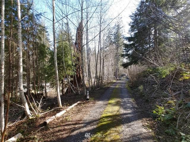 111 Salmon Drive, Forks, WA 98331 (#1774592) :: Hauer Home Team