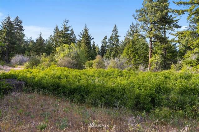 3 Black Hawk Drive, Cle Elum, WA 98922 (#1775091) :: Keller Williams Western Realty