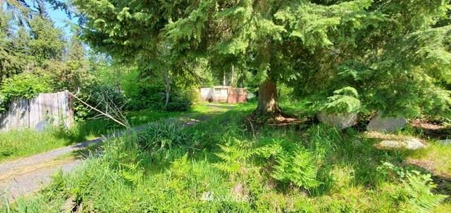 11915 221st Street SE, Snohomish, WA 98296 (#1775222) :: Home Realty, Inc