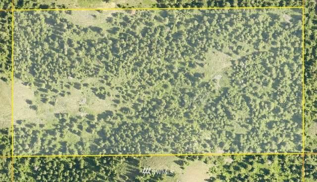 5 Redfield Road, Waterville, WA 98858 (#1775286) :: Keller Williams Western Realty