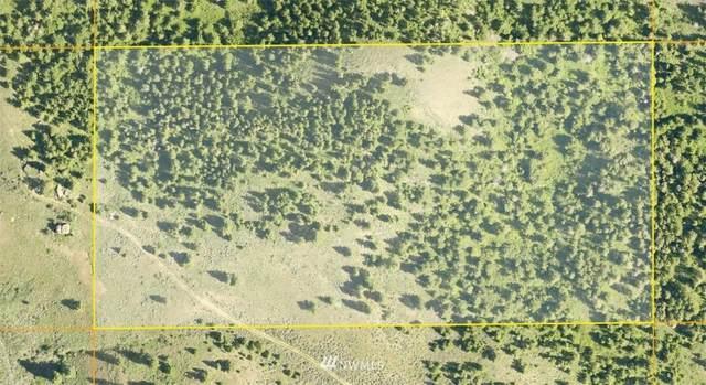 11 Redfield Road, Waterville, WA 98858 (#1775302) :: Keller Williams Western Realty