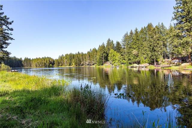 11910 Alpine Drive SW, Port Orchard, WA 98367 (#1775815) :: Better Homes and Gardens Real Estate McKenzie Group