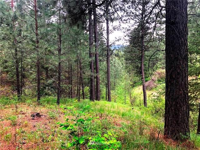 5491 Sailor Rd, Deer Park, WA 99006 (#1776194) :: Keller Williams Western Realty