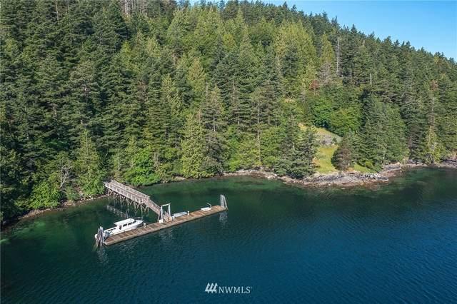 229 Tyee Drive, Orcas Island, WA 98245 (#1776448) :: Keller Williams Western Realty