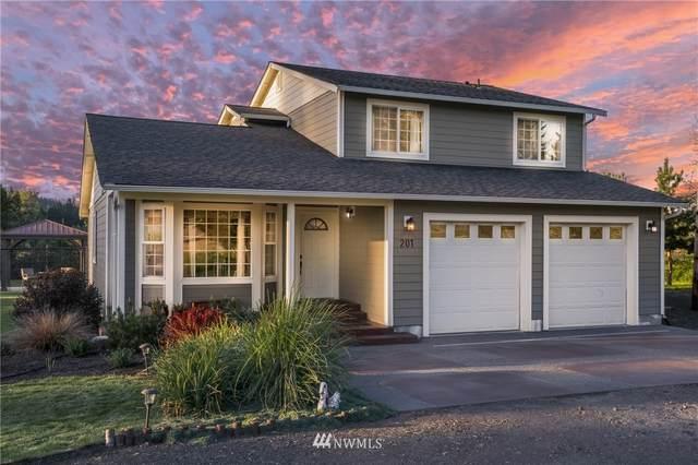 201 Omer Ave, Pe Ell, WA 98572 (#1776542) :: NW Homeseekers