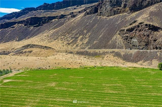102 Palisades Road, Palisades, WA 98845 (#1776615) :: Keller Williams Western Realty