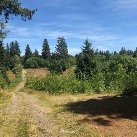 0 Green Road, Forks, WA 98331 (#1776819) :: NW Homeseekers