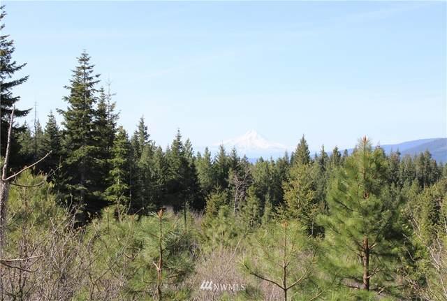 0 Mt Adams Recreation Area Road, Trout Lake, WA 98650 (#1777217) :: Keller Williams Western Realty