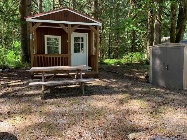 63876 Cascade Park Place, Marblemount, WA 98267 (#1777328) :: NW Homeseekers