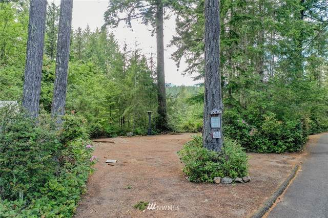 61 N Pacific Vista Drive, Lilliwaup, WA 98555 (#1777966) :: Keller Williams Western Realty