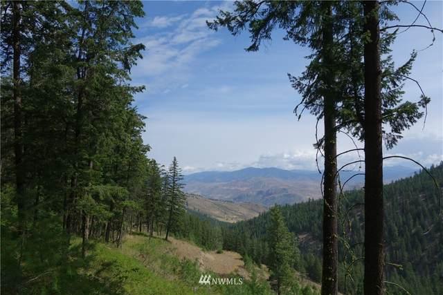 380 Lookout Mountain Road, Twisp, WA 98856 (#1778446) :: Keller Williams Western Realty