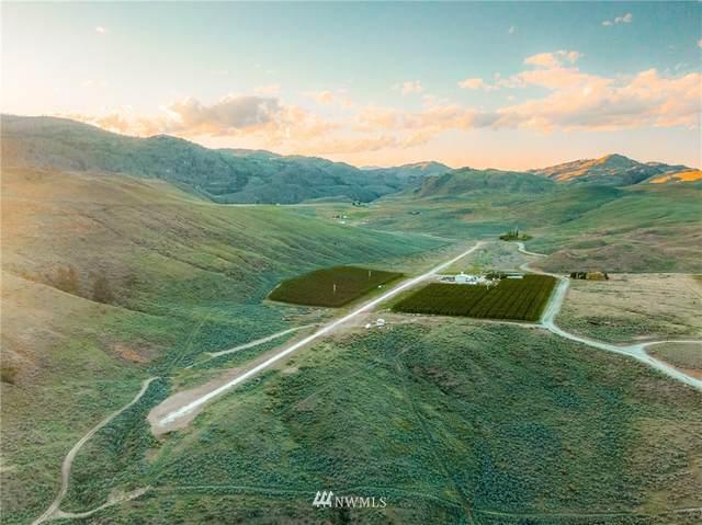 81 B E Dry Coulee Road, Okanogan, WA 98840 (MLS #1778467) :: Nick McLean Real Estate Group