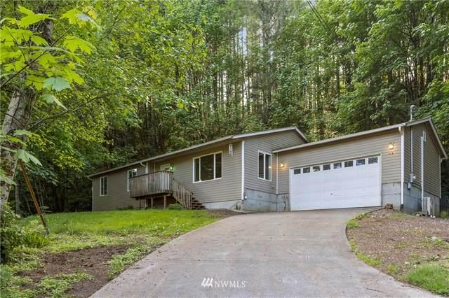 61 NE Steelhead Drive N, Belfair, WA 98528 (#1778574) :: Better Properties Lacey