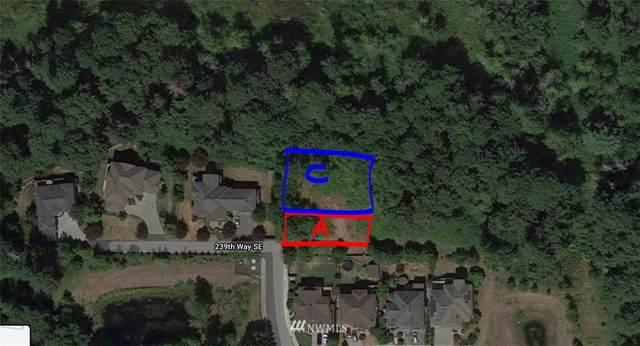 109 239th Way SE, Sammamish, WA 98074 (#1778732) :: The Kendra Todd Group at Keller Williams