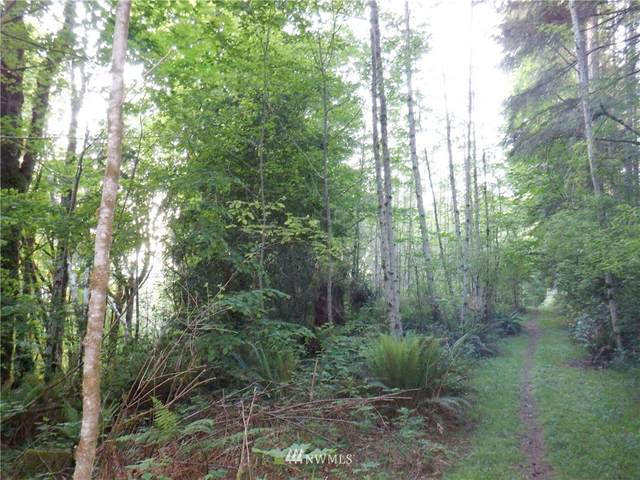 99999 Old Lindsay Hill Road, Quilcene, WA 98376 (#1780218) :: Ben Kinney Real Estate Team