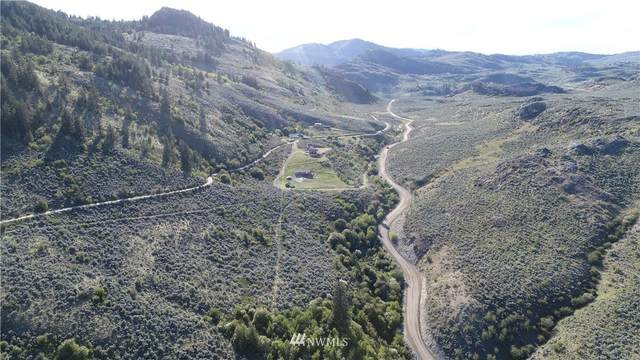 111 Eagles Bluff, Oroville, WA 98844 (#1780426) :: Keller Williams Western Realty