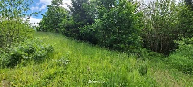 10921 Salmon Creek Lane SW, Olympia, WA 98512 (#1780516) :: Franklin Home Team