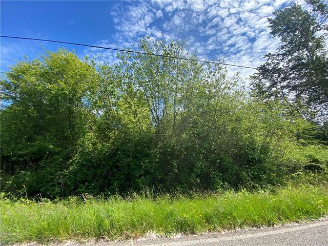 0 Teller Road, Point Roberts, WA 98281 (#1780561) :: McAuley Homes